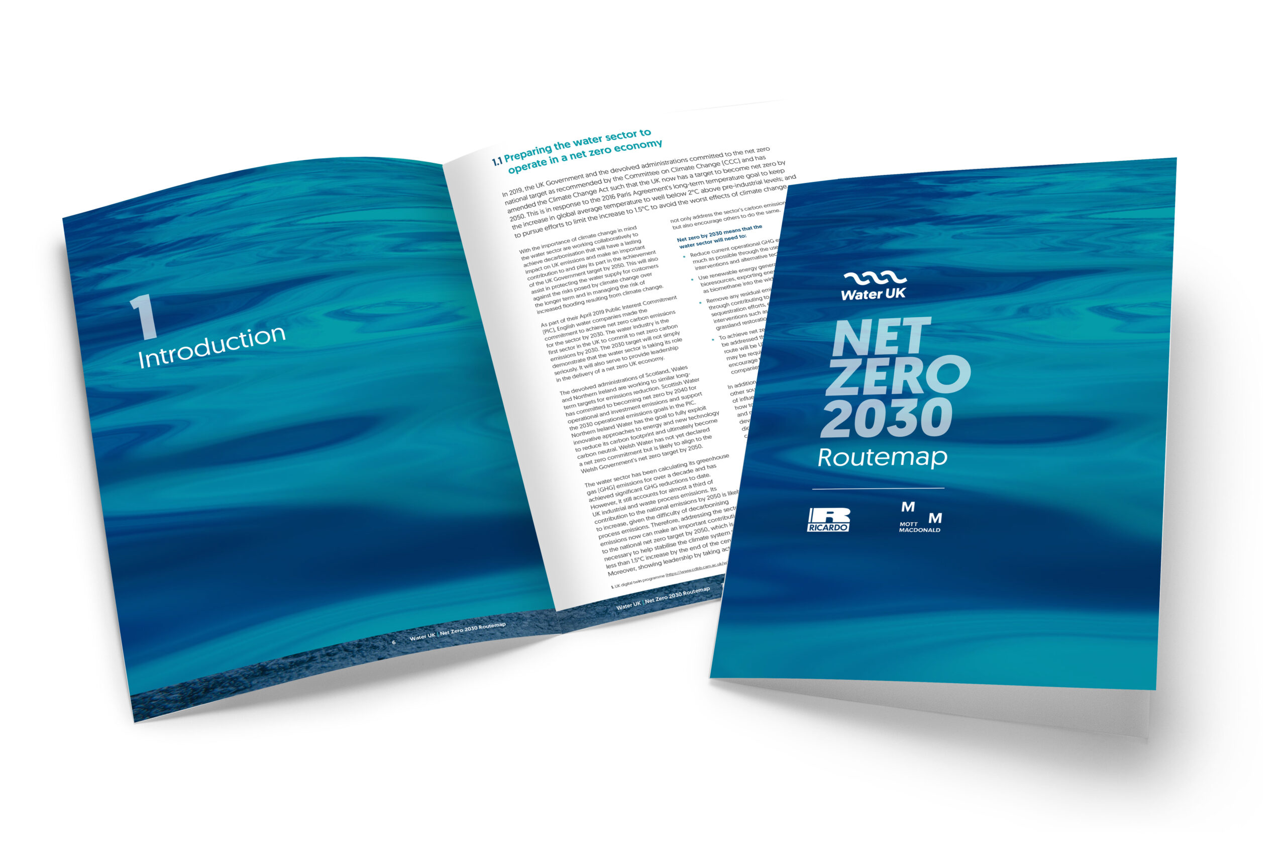The Net Zero 2030 Routemap